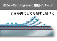 zenxerodynamic04